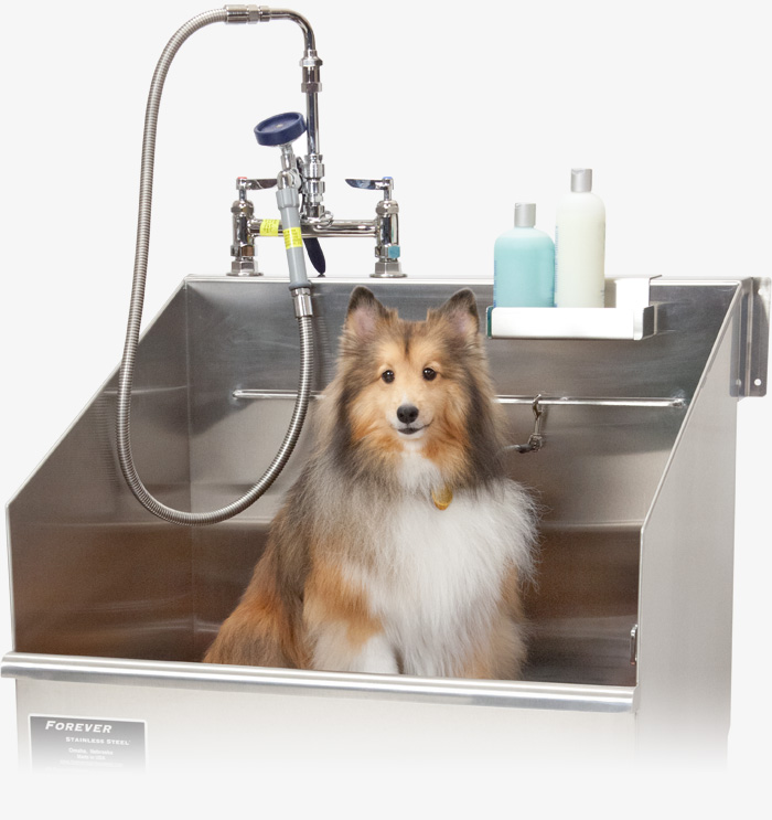 Forever stainless steel designed with pets in mind solutioingenieria Image collections